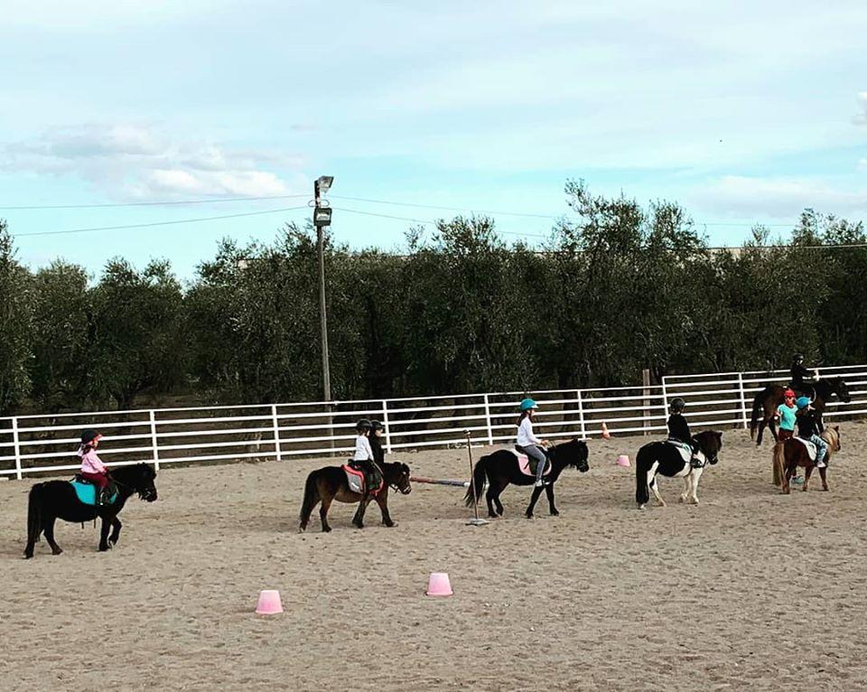 Centro ippico e Scuola di Equitazione - La Macchia degli Esperti - Molfetta